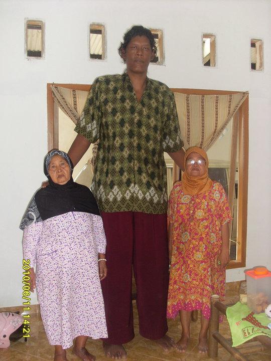 самый высокий человек супарвоно 2,42 м