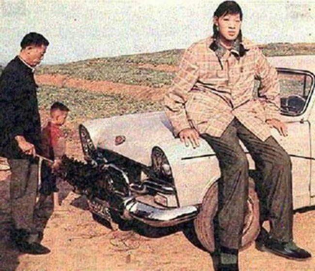 самая высокая женщина Цзен Цзиньлянь - 2,48