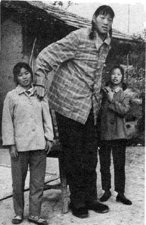tallest woman Zeng Jinlian - 8 feet 1.6 inc