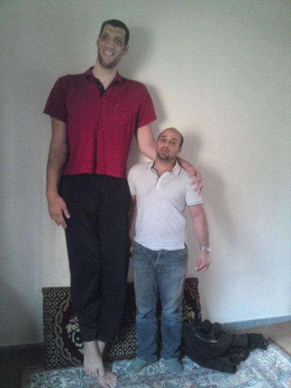 Мортеза Мерзад 246 см